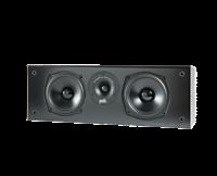 Polk Audio T30